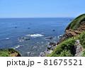 城ヶ島公園からの太平洋 81675521