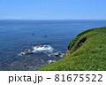 城ヶ島公園からの太平洋 81675522