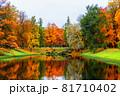 Autumn landscape, beautiful city park with fallen yellow leaves. 81710402