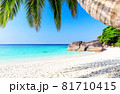 Beautiful beach and blue sky in Similan islands, Thailand. 81710415