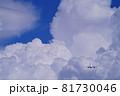 羽田空港を離陸した旅客機 81730046