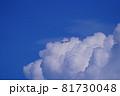 羽田空港を離陸した旅客機 81730048