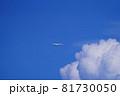 羽田空港を離陸した旅客機 81730050