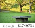 公園のベンチ 81749731