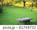 公園のベンチ 81749732
