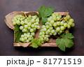 White grape 81771519