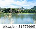 ススキがなびく秋の田園風景 81779995