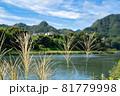 ススキがなびく秋の田園風景 81779998