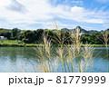 ススキがなびく秋の田園風景 81779999