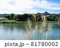 ススキがなびく秋の田園風景 81780002