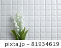 鈴蘭・すずらん・スズランの花。コピースペース有りの白背景・白いタイル。 81934619
