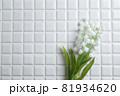 鈴蘭・すずらん・スズランの花。コピースペース有りの白背景・白いタイル。 81934620