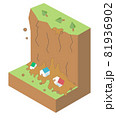 崖崩れの構造 土砂災害アイソメトリックなイラスト 81936902
