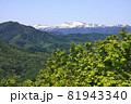 豊平山から見る残雪の無意根山 81943340