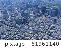 都市風景・日本橋周辺から大手町を望む・空撮 81961140