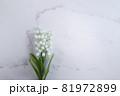 鈴蘭・すずらん・スズランの花。コピースペース有りの白背景 81972899