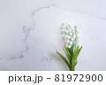 鈴蘭・すずらん・スズランの花。コピースペース有りの白背景 81972900