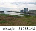 香川県観音寺市柞田川河口 81983148