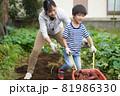 収穫したサツマイモを運ぶ男の子 81986330