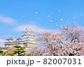 兵庫県 春の桜吹雪と青空の姫路城 82007031