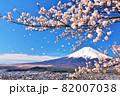 春の桜と桜吹雪 そして青空の富士山 82007038