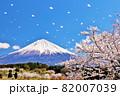 春の桜と桜吹雪 そして青空の富士山 82007039
