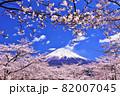 春の桜と青空の富士山 82007045