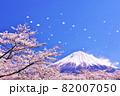 春の桜と桜吹雪 そして青空の富士山 82007050