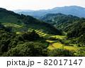 日本の原風景の棚田 82017147