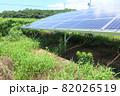 雑草が生い茂った太陽光発電所 82026519