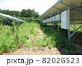 雑草が生い茂った太陽光発電所 82026523