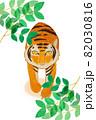 虎 82030816