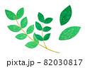 葉っぱ 82030817