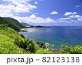 奄美大島の公園から見える海岸風景 大和戸円 ヒエン浜 82123138