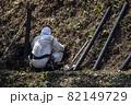 急傾斜地で土砂崩れ対策として土砂防護棚を作る造園業者 82149729