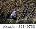 急傾斜地で土砂崩れ対策として土砂防護棚を作る造園業者 82149733