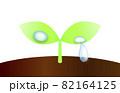 新芽としずくのイラスト。エコのイメージイラスト。 82164125