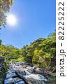 神奈川県箱根湯本 須雲川 82225222