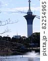 鶴見緑地公園 展望塔(いのちの塔)2 82254965
