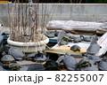 ミシシッピアカミミガメ、イシガメ、クサガメ 82255007
