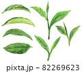 水彩抹茶の葉っぱの素材集2 82269623