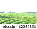水彩茶畑のはがきテンプレート1 82269868