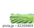 彩茶畑のはがきテンプレート2 82269869