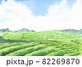 水彩茶畑のはがきテンプレート3 82269870