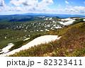 初夏の無意根山から見る雪渓の斜面 82323411