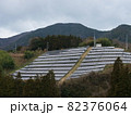 丘一面に設置されたソーラーパネル 82376064