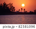 南国の海でヤシの木などをシルエットの向こうに沈む夕日 82381096