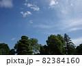 青空と雲と木の緑 82384160