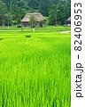 日本の原風景を見るような荻ノ島の環状集落 82406953