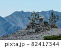北アルプスの絶景トレイル。日本の雄大な自然。蓮華岳の祠と立山。 82417344